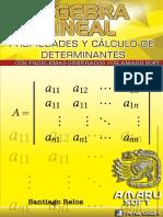 Cap_Determinantes.pdf