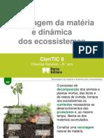 Reciclagem Da Matc3a9ria e Dinc3a2mica Dos Ecossistemas h21 (1)