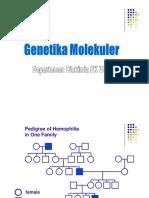 Genetika Molekular