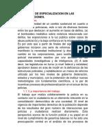 EL GRADO DE ESPECIALIZACION EN LAS CORPORACIONES.docx