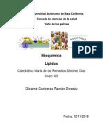 Lípidos Dórame Contreras Ramón 422-2.docx