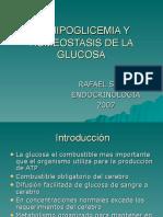 Hipoglicemia y Homeostasis de La Glucosa