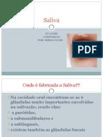 AULA SALIVA.pdf