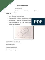 HISTOLOGIA OPX (1).docx