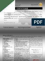 Final (Guindaste).pdf