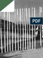 FELIPE-MUJICA_Jugador-como-pelota-w2.pdf