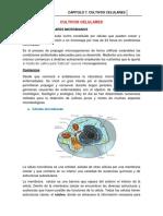 Cultivos Celulares #6 (1).docx