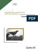 Corneille.pdf
