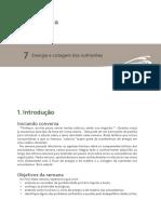 Ecologia_v2_07