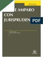 Carbonell. Ley de Amparo con Jurisprudencia.pdf