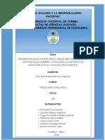 na-EXCEPCIONALIDAD-NEUROLÓGICA-PSICOLOGÍA-DE-LA-PERSONA-CON-PARÁLISIS-CEREBRAL-ETIOLOGÍA-CLASIFICACIÓN-CARACTERÍSTICAS-Y-PLAN-DE-TRATAMIENTO..docx