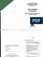 CARCEL_INMIGRACION_Y_SISTEMA_PENAL.pdf