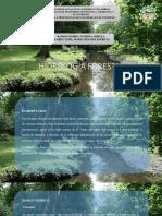 Hidrología Forestal