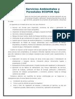 Ecofor Servicios forestales - 2019