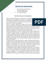 CARAPACHOS.docx