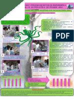Taller Tecnicas Procedimientos Mir Pediatria (1)