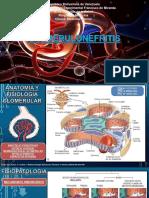 GLOMERULONEFRITIS.pptx