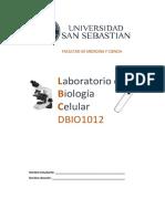 GUIA DBI.pdf