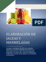 BIOQUIMICA JALEA.docx