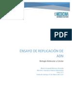 Ensayo de Replicación.docx