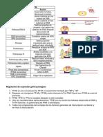 guía de biologia.docx