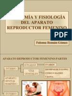 Aparatofemenino Pptdiapo 121117201047 Phpapp01
