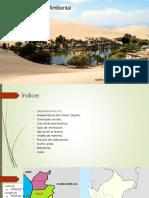 pablo reluz.pdf