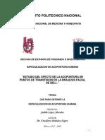 Tesis Dra. JUDITH.pdf