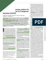 LIANTI.pdf