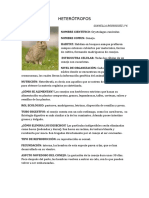 GIANELLA BIOLOGIA.docx