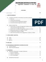 PLAN LOCAL DE SEGURIDAD CIUDADANA PUCYURA -2018. ABANZADO.docx