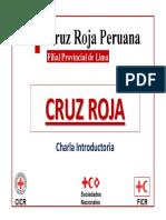cusersbernabedocumentscruzrojacharlaintroductoriacruzroja001charlaintroductoriacr1-4-091008121551-phpapp01.pdf