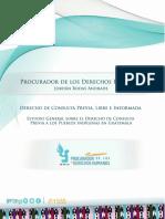 Informe de Consulta Previa Libre e Informada.pdf