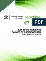 guia_cromatografia.pdf