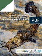 Programa Nacional de Conservación pez capitán de la sabana.pdf