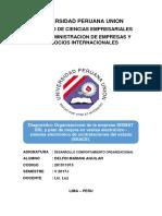 INFORME DE DIAGNOSTICO ORGANIZACIONAL 1.docx