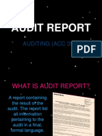 Audit Report Notes