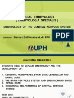 Embryology of Brain 2017