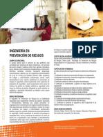 ing_prev_ries.pdf