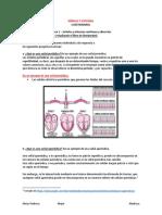 Señales y Sistemas_alexis Pedroza