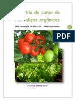 apostiladehortaliasorgnicas-140824134549-phpap.pdf