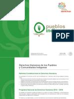 005 Pueblos Indigenas