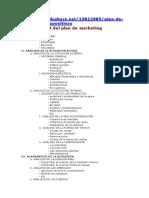 Lineamientos plan de marketing.docx