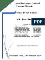 Informe Peach y Nahoas Ultimo (1)