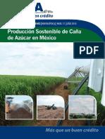 011 - Producción_Sostenible_de_Caña_de_Azucar_en_México.pdf