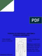Posições Anatômicas
