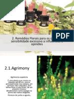 Remédios Florais Para Os Que Têm Sensibilidade Excessiva a Influências e.pptx