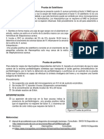 Satelitismo y porfirina.docx