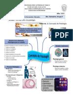 Introducción a La Patologia