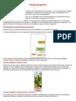 Ejemplos de paisaje1.docx